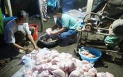 Cần Thơ: Cận Tết, phát hiện chả cá có hàn the, dưa cải chứa chất vàng ô