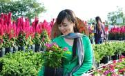 Nông dân làng hoa Sa Đéc bỏ tiền túi làm du lịch