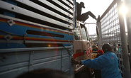 Thái Lan: Không bên nào chịu nhượng bộ