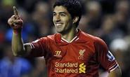 Suarez đưa Liverpool lên đầu bảng