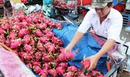 Trái cây dội chợ, rớt giá hàng loạt