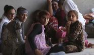 Nhiều phụ nữ Yazidi bị IS bắt làm nô lệ tình dục