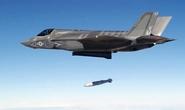 Chiến đấu cơ F-35 bốc cháy ở Mỹ