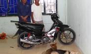 Trộm chó mang đi bán, bị cảnh sát tóm gọn