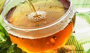 Giải thích về tác dụng ngừa ung thư của trà xanh
