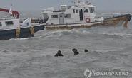 Vụ chìm tàu Hàn Quốc: Triều Tiên không hề chia buồn