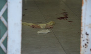 Bắt kẻ giết người yêu rồi tự sát