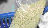 Sản xuất ma tuý tổng hợp bằng thạch cao, bột mì