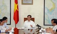 Thủ tướng yêu cầu Bộ Y tế rút kinh nghiệm khi họp khẩn về dịch sởi