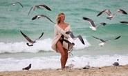 """""""Thiên thần"""" Candice Swanepoel quyến rũ trước biển"""