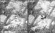 """NASA bối rối vì hòn đá """"ma"""" trên sao Hỏa"""