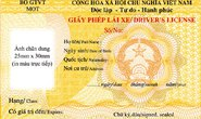 Bất tiện khi gộp chung giấy phép lái xe