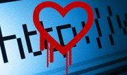 Phát hiện Heartbleed trên trình duyệt Chrome