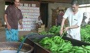 Phát hiện hai cơ sở dùng hóa chất Trung Quốc ngâm trái cây