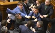"""Nghị sĩ Ukraine """"thượng cẳng tay, hạ cẳng chân """" vì miền Đông"""