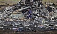 Mỹ trưng bằng chứng phe ly khai Ukraine bắn hạ MH17