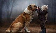 Bộ ảnh tuyệt đẹp mẹ chụp bé tâm sự với thú cưng