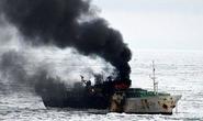 Tàu cá bị nạn, 7 ngư dân thương vong