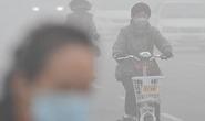 Trung Quốc chống ô nhiễm không khí trước thềm APEC