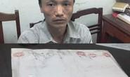 Vi vu từ Sơn La vào Thanh Hóa với 3 bánh heroin trong cốp xe