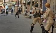 """Ấn Độ: Bị thiêu sống vì nghi """"chở thịt bò"""""""