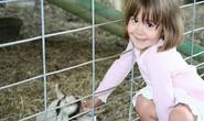 Tại sao trẻ nông thôn ít bị suyễn, dị ứng?