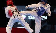 Taekwondo Việt sẵn sàng cho Olympic 2016