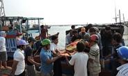 Tàu cá bị tông, một ngư dân bị thương ở Hoàng Sa