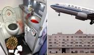 Hành khách đập đầu tự tử trong toilet máy bay