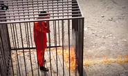 Jordan sẽ hành quyết nữ tù nhân để trả thù IS
