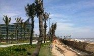 Xóa sổ rừng phòng hộ xây sân golf, resort