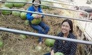 Người đẹp vận động mua dưa hấu: Lòng tốt bị nghi kỵ!
