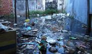Đường ngập, rác thải nổi lềnh bềnh sau mưa ở TP HCM