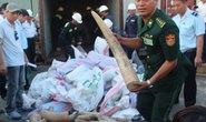 Đà Nẵng: Bắt thêm 2,3 tấn ngà voi nhập lậu