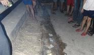 Cá lạ dài 4 m, hình mái chèo dạt vào bờ biển
