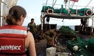 Tàu Trung Quốc cướp cá khắp nơi