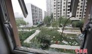 Hàm lượng cyanua ở Thiên Tân gấp 356 lần mức cho phép