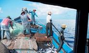 Phản đối hành động cấm đánh bắt cá phi lý của Trung Quốc
