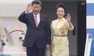 Chủ tịch Trung Quốc Tập Cận Bình: Nguyện cùng Việt Nam nhìn về đại cục