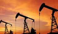 Mỹ giảm giàn khoan, giá dầu ngoi lên