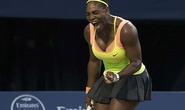 Serena quyết lập kỳ tích
