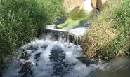 Xưởng nhuộm 7 lần xả thải ra hồ chứa nước sinh hoạt