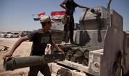 IS bị vây chặt ở Fallujah, Raqqa