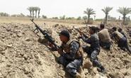 Iraq bắt hơn 450 tay súng IS bỏ trốn khỏi Fallujah