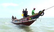 Tàu cá Trung Quốc hút cạn cá Guinea