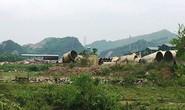 400 tấn chất thải nguy hại của Formosa được xử lý ở Nghi Sơn?