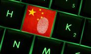 Úc đóng 1.025 trang web giả mạo hầu hết đặt ở Trung Quốc