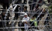 Người tị nạn dọa ném trẻ em qua hàng rào thép gai