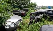 Cận cảnh dàn siêu xe bí ẩn bị đại gia Trung Quốc bỏ rơi trong rừng