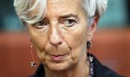 Sếp IMF phải hầu tòa vì vụ 400 triệu euro trả cho tài phiệt Pháp